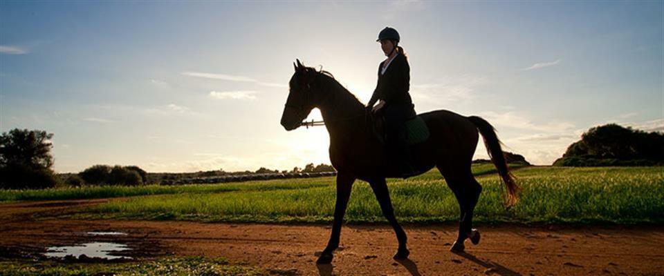 2 Hour Horse Riding