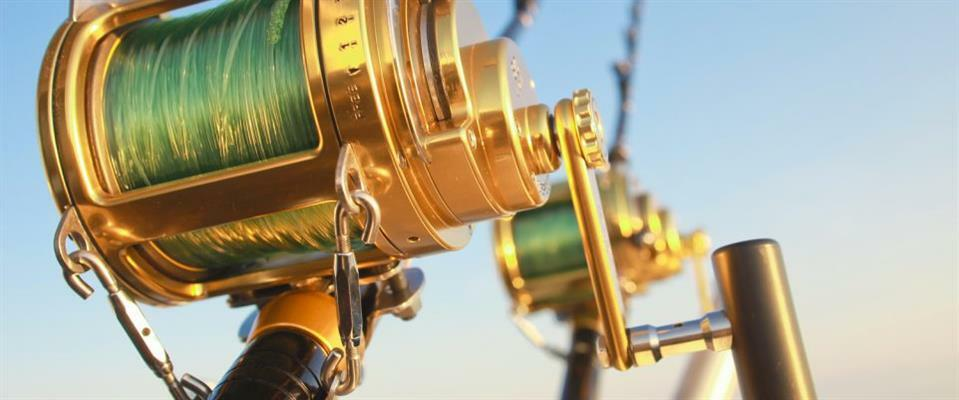 4 Hour Deep Sea Fishing $380
