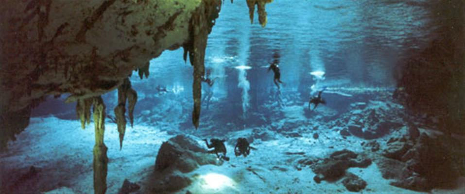 Cenotes Dive (or Snorkel)