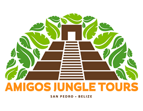 Amigos Jungle Tours