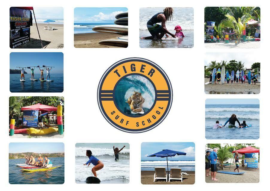 Tiger Surf School