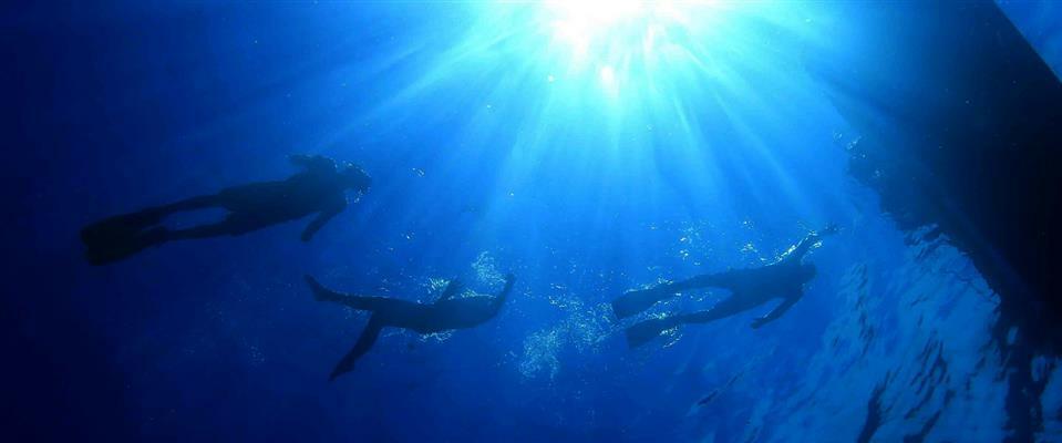 Snorkel - Cenote