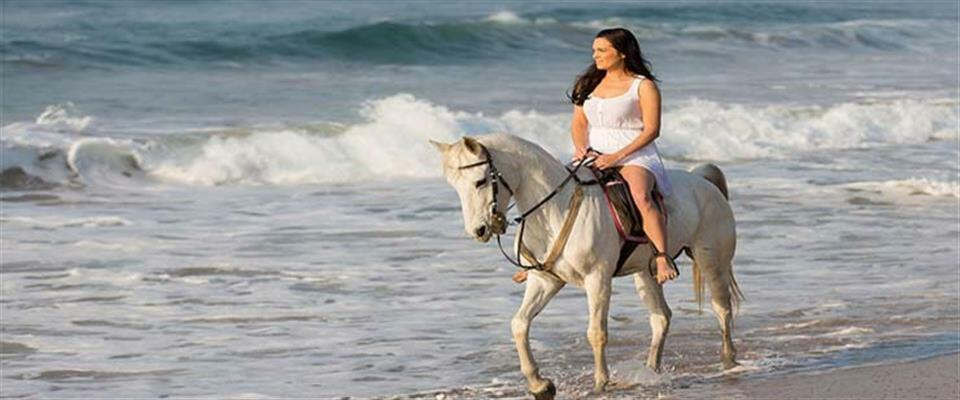 Beach Horse Back Riding Tour