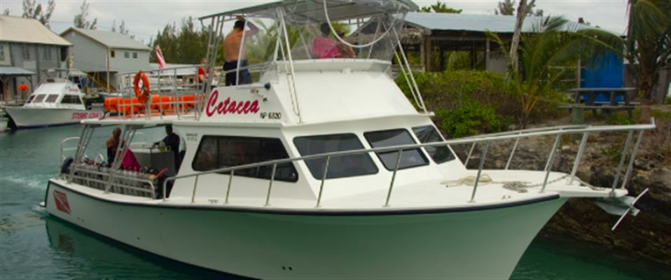 Extra Large 46 ft.+ Boat Charter 1/2 Day - 1-50 People