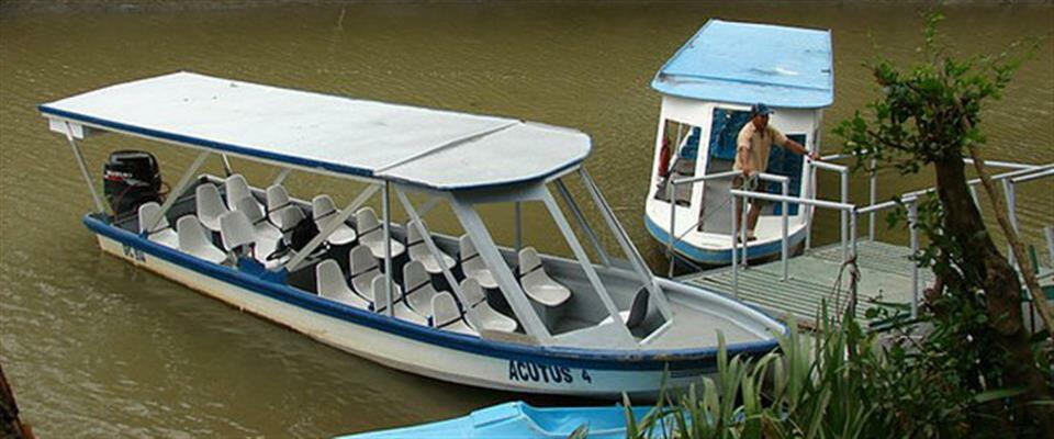 Safari Boat Tour