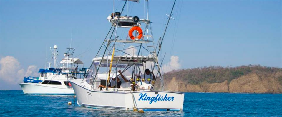 Kingfisher Sportfishing - Offshore Fishing Trips