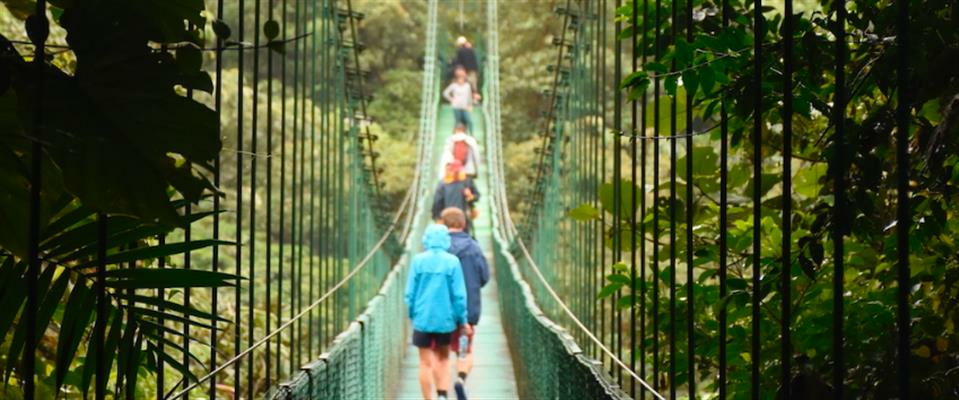 Monteverde One-Day Tour: Canopy Tour + Treetop Walkways + Lunch