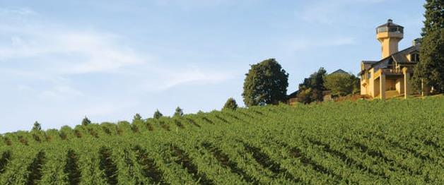 Private Wine Tour for Two