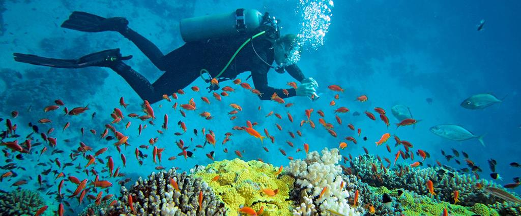 2 Tank SCUBA dive day trip package