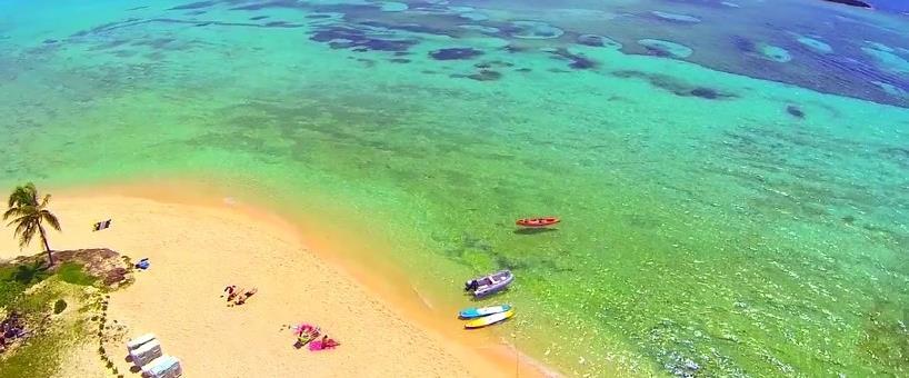Beachgoers Package Cruise Arrival