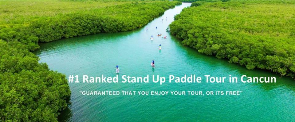 Exotic Mangrove Jungle Tour