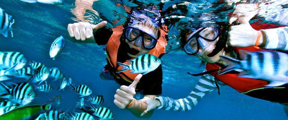 Snorkel Tour - Isla Mujeres