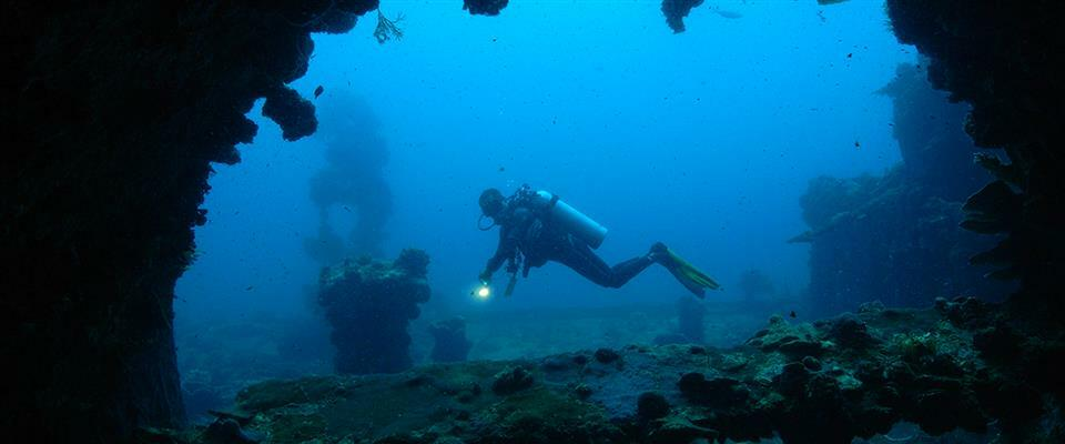 """Ship Wreck """"Kyokuzan Maru"""" and/or other nearby dive sites such as Diboyuyan and Rock Island"""